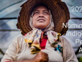 2020 Call for Nominations: Indigenous Peoples Awards