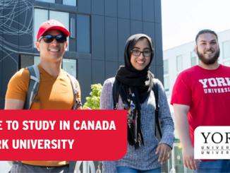 Scholarships, Awards and Bursaries -York University in Canada